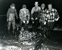 Smelt Fishing